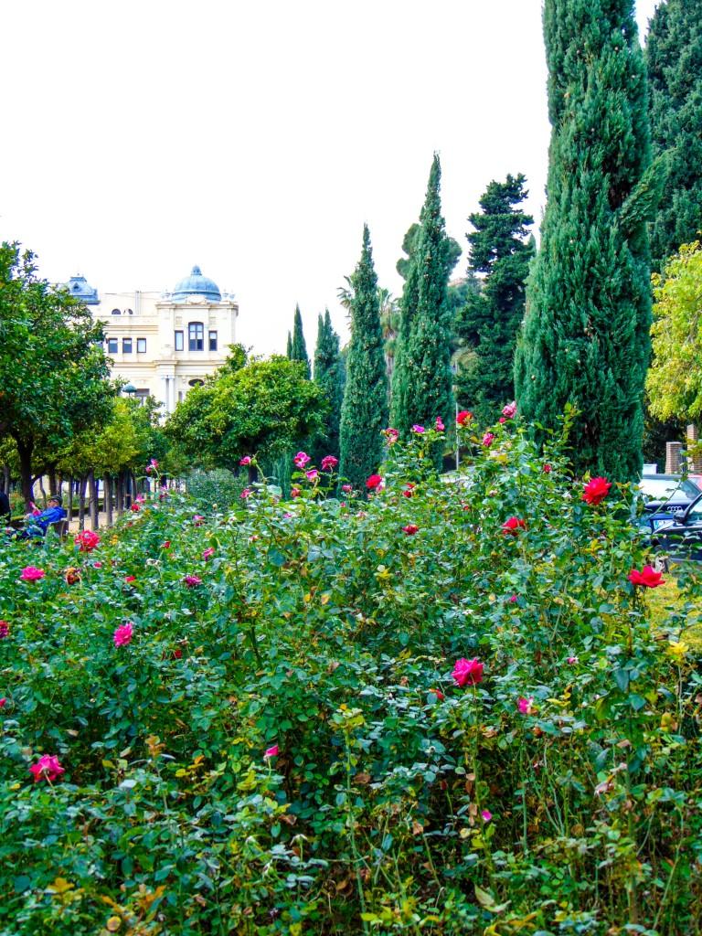 Jardines de Pedro Luis Alonso